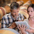 Winemakers in cellar using electronic tablet to control wine quality - Stock Photo