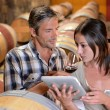 Stock Photo: Winemakers in cellar using electronic tablet to control wine quality