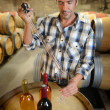 Winemaker getting sample of red wine from barrel — Stock Photo #13930524