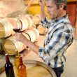 Winemaker getting sample of red wine from barrel - Foto de Stock