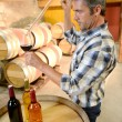 Winemaker getting sample of red wine from barrel - Zdjęcie stockowe