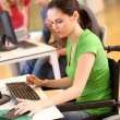 Young woman in wheelchair working in office - Stockfoto