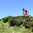 Man riding mountain bike in summertime — Stock Photo