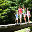Family walking on a bridge in mountain forest — Stock Photo #13936955