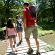 Back view of family walking on a bridge — Stock Photo #13936964