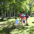 Back view of family walking in mountain forest — Stock Photo