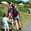 Stock Photo: Family watching sheeps in the mountain while trekking