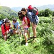 Family on a trekking day looking at wild flowers - Foto Stock