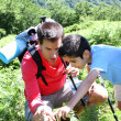 Father showing wild flowers to son in the mountain — Stok fotoğraf