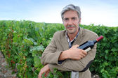 Successful winemaker in vineyard with bottle of red wine — Stock Photo