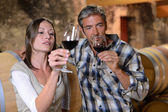 Couple of winemakers tasting red wine — Stock Photo