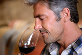 Closeup on winemaker smelling red wine in glass — Stock Photo