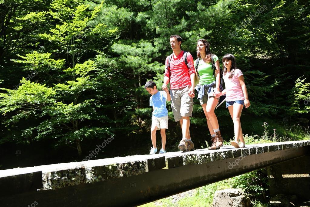 Фотообои Семья гуляет по мосту в горном лесу