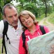 Stock Photo: Senior couple rambling in forest with map