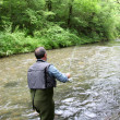 Back view of fisherman in river fly fishing - Stock Photo