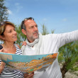 Royalty-Free Stock Photo: Senior couple on vacation looking at city map
