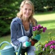 Cheerful blond woman planting flowers in garden — Stock Photo #13942884