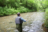 Back view of fisherman in river fly fishing — ストック写真