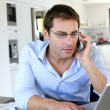 Stock Photo: Home office worker talking on mobile phone