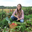 Woman knelt in vegetable garden — Stock fotografie