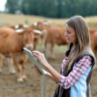 Woman farmer in front of cattle using tablet — Foto de Stock   #13965589