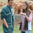 Farmer and woman in cow field using tablet — Foto Stock