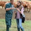 Farmer and woman in cow field using tablet — Φωτογραφία Αρχείου