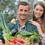 Portrait de deux agriculteurs tenant le panier de légumes — Photo