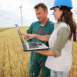 Farmer and engineer in wheat field with wind turbines in background - Stock Photo
