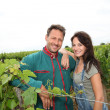 Happy couple of winegrowers in vineyard - Stock Photo