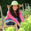 Smiling woman in vegetable garden - Stock Photo