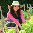 Foto de Stock  : Smiling womin vegetable garden