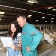 Couple of farmers using electronic tablet — Stock Photo