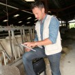 Breeder in barn with electronic tablet  — Stock Photo