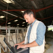 Breeder in barn with laptop computer — Stock Photo