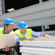 Stock Photo: Construction workers checking building material
