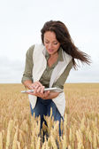 Woman with electronic tablet analysing wheat ears — Stock Photo