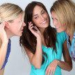 Group of friends with mobile phone - Stock fotografie