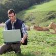 Breeder sitting in cattle field with laptop computer - Foto Stock