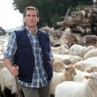 Stock Photo: Shepherd standing by sheep in meadow