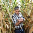 Agronomist in corn field with electronic tablet — Stock Photo