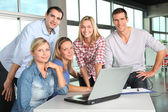 Group of working in the office — Stock Photo