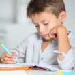 Little boy doing his homework — Stock Photo #18262977