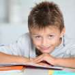 Little boy doing his homework — Stock Photo #18263017