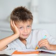 Little boy doing his homework — Stock Photo #18263025