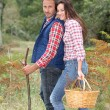 Royalty-Free Stock Photo: Couple in forest picking mushrooms in autumn