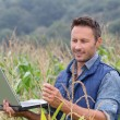 Agronomist analysing cereals with laptop computer — Stock Photo #18265057