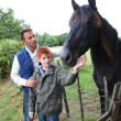 Parents and children petting horses in countryside - Stok fotoğraf