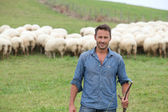 пастух, стоя в зеленом поле с овцами — Стоковое фото