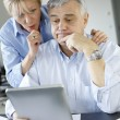 Stock Photo: Senior couple trying to figure out tax declaration